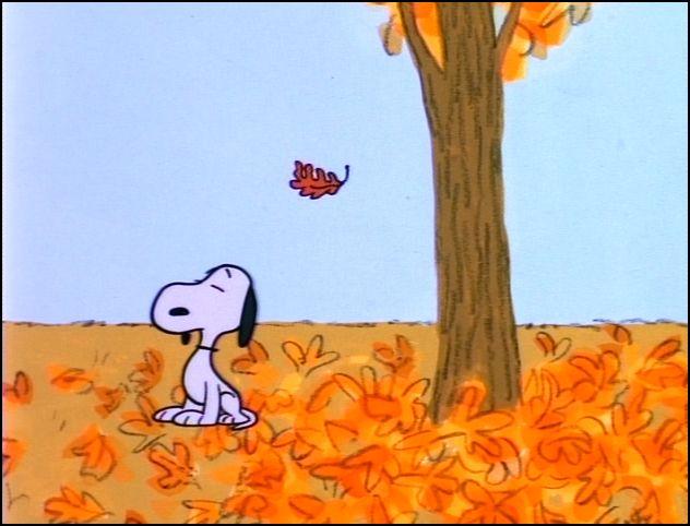Charles M. Schulz / autumnanthology.com